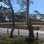 treated pine, garden retaining wall, diy retaining wall, steel posts, retaining wall sleepers, retaining wall blocks, retaining walls geelong, galvanized post